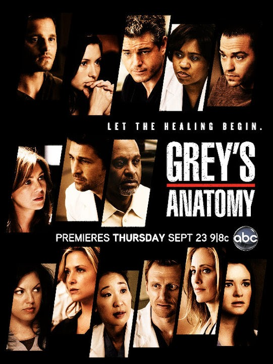 Greys Anatomy Season 8 Finale Crazy Yet Wise